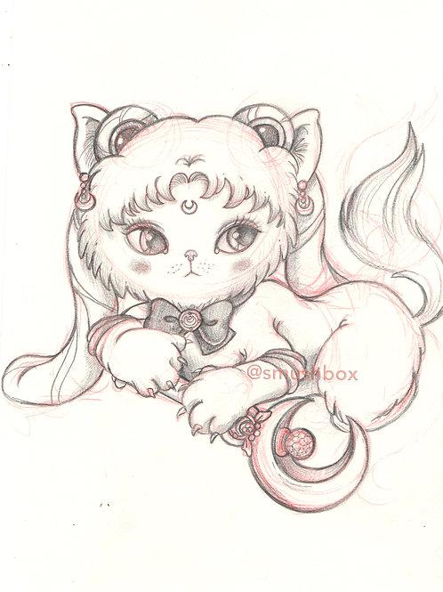 Sailor Moon kitten