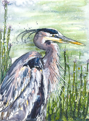 Handsome Heron Fine Art Print
