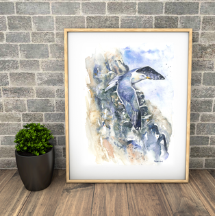 gull and cliffs. Large watercolour print. Naomi Neale.png