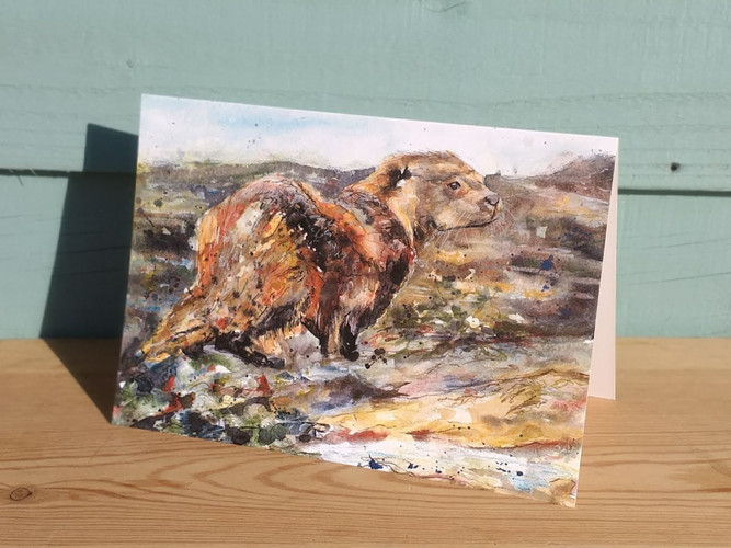 Otter greetings card. Naomi Neale Art. A