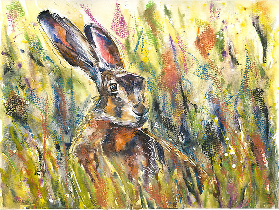 Hare in Long Grass Fine Art Print