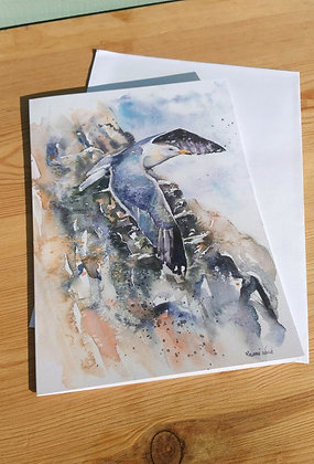 Gull and Cliffs Greetings Card
