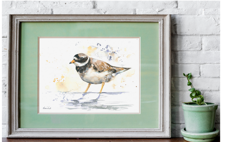 plover watercolour print.png