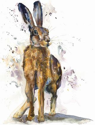 Tense Hare Print