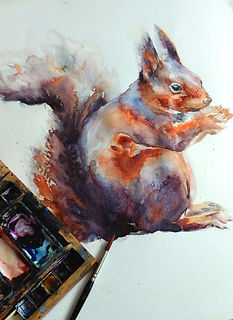 squirrel for website 2.jpg