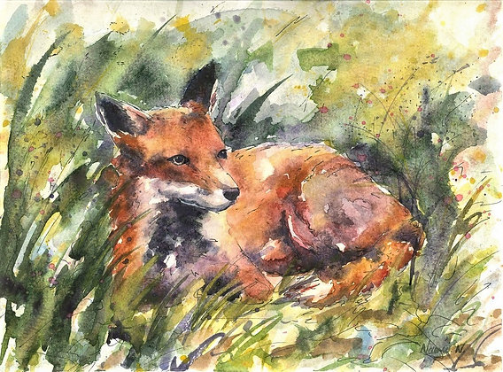 Fox in Long Grass Original Watercolour