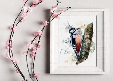 woodpecker painting. Bird painting. British artist. Naomi Neale Art .png