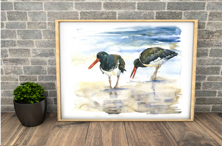 oystercatchers Large watercolour print. Naomi Neale Art.png