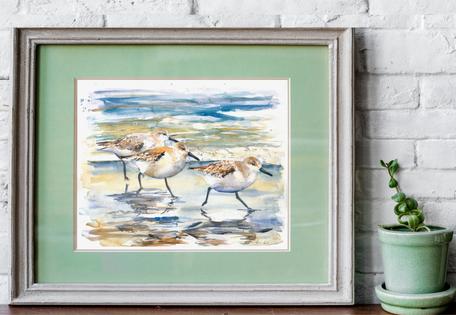 sanderlings watercolour print. Naomi Neale art. British artist. Bird painting.png