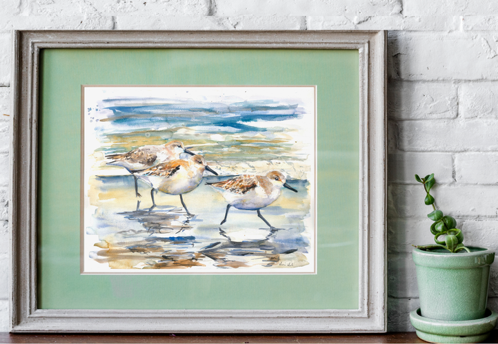 sanderlings watercolour print. Naomi Neale art. British artist. Bird painting.png