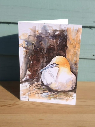 Gannet Greetings Card