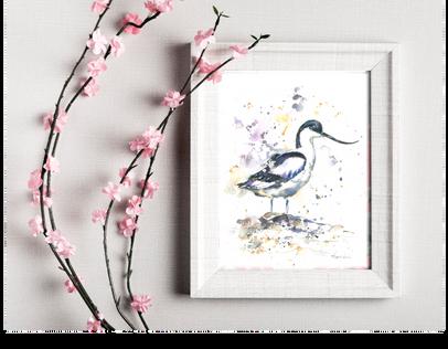 avocet small print. Naomi Neale Art. Bird paintingpng