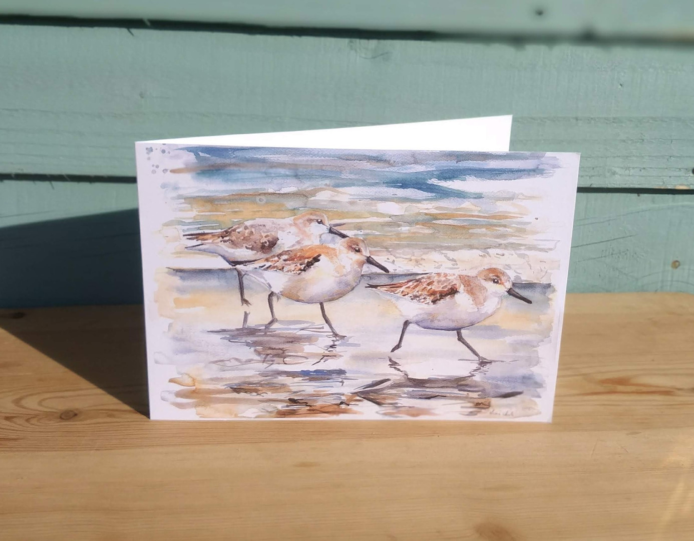 Sanderlings greetings card. Bird waterco