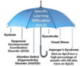 spld-umbrella-2015.jpg