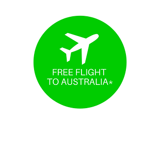 FREE FLIGHT no background.png