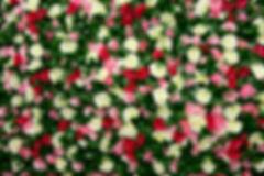 Country Blossom Flower Wall (5).JPG