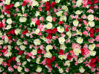 Flower Wall Photo Booth Hire