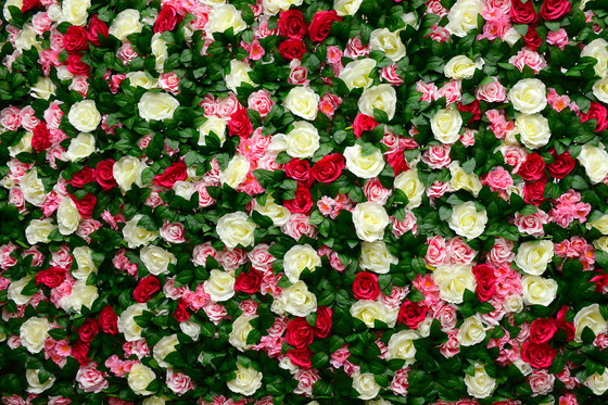 Country Blossom Flower Wall Hire