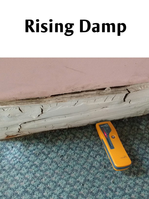 Often misdiagnosed for a leak, rising damp can lead to decorative spoiling, wood rots and the overall devaluation of your property.  Rising damp can be non destructively and correctly diagnosed with subsequent remedial works advised.