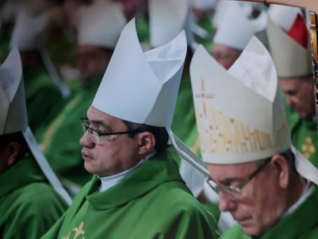 Dom Evaldo Carvalho bispo da diocese de Viana destaca Sínodo para Amazônia