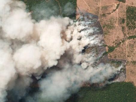 Emergência ambiental na Amazônia: região implora por uma ética ecológica de desenvolvimento