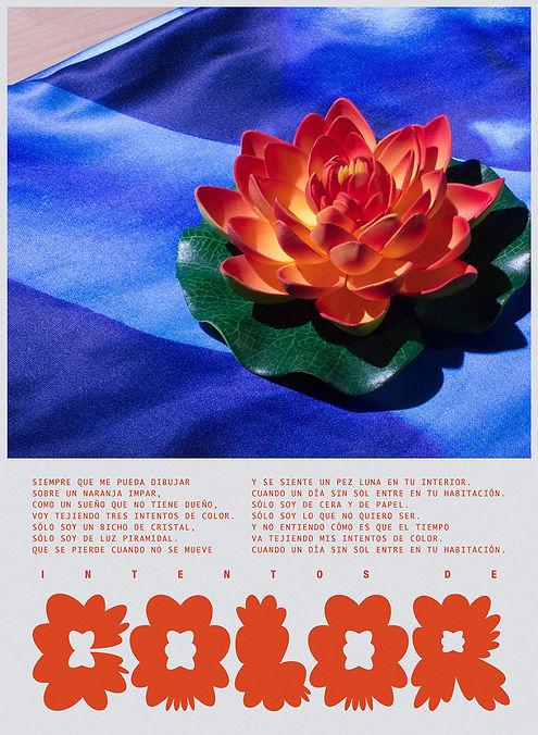 Carmen_Nacher_Flowers_3.jpg