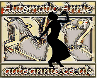 Aunnie suitcase crop - Copy.png