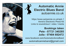 Automatic Annie Contact Info