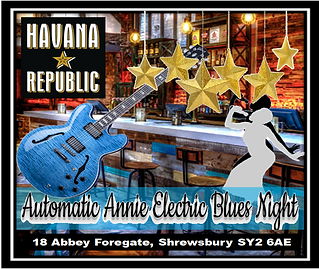 Poster Automatic Annie's Electric Blues Nights