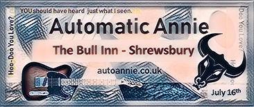 Automatic Annie at The Bull Inn