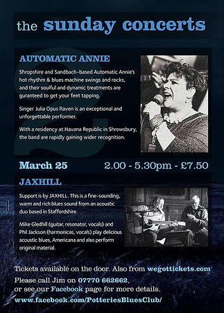 Automatic Annie at The Potteries Blues Club / Staffs
