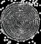 70C9C883-5F78-47DB-BC83-6BC8F82F75C8_edited.png
