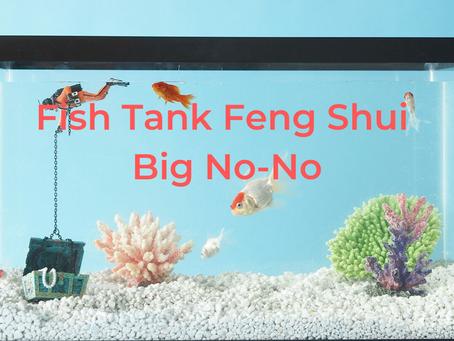 6 Big No-No for a Feng Shui Fish Tank