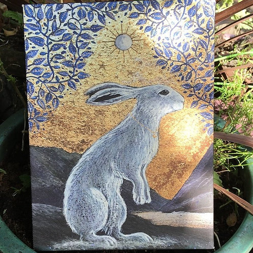 Creggan White Hare - Canvas boxed print