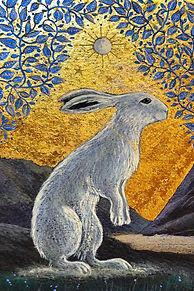 The Creggan white hare website.jpg