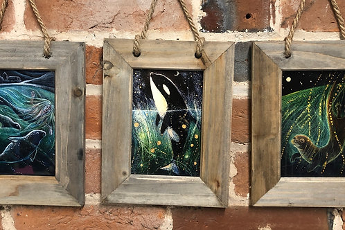 Driftwood framed print with 3 pictures to choose from.