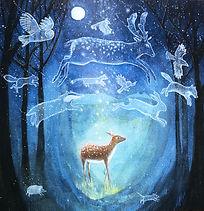 enchanted forest web amazon.JPG