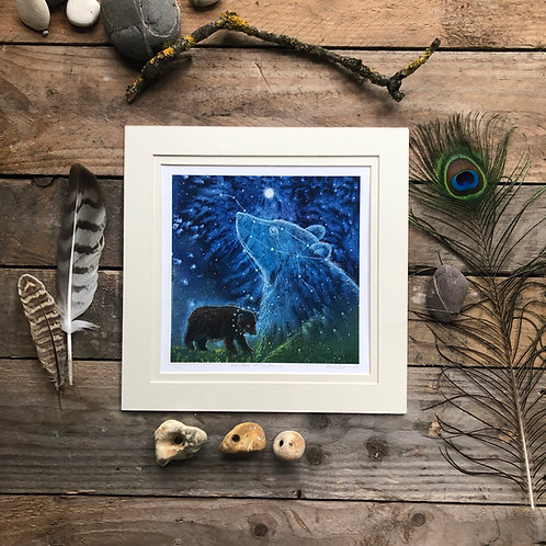 The Bear in the Stars- Signed Limited Edition Print of 100