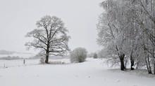 Fortsatt vinter !