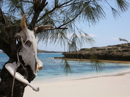 A to Z Travel Blog - Madagascar