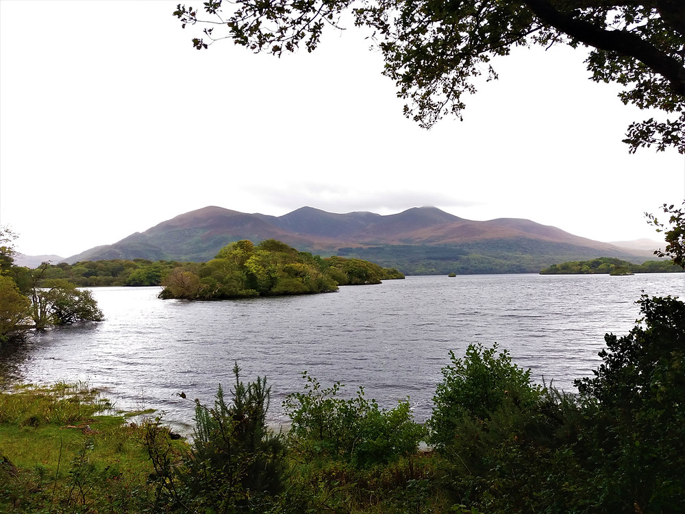 View of Lake in Killarney National Park, seen while cycling.