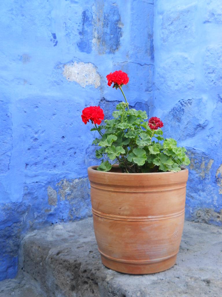 ©MDHarding Arequipa Monastery, Peru