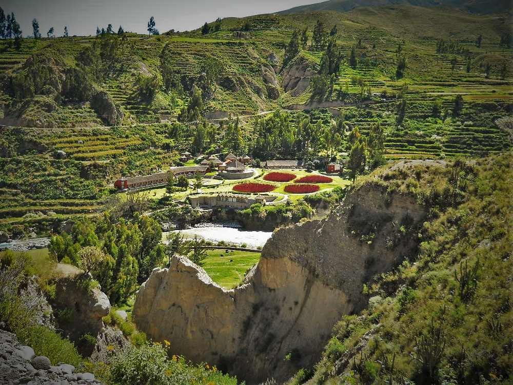 Vantage point of Colca Canyon Lodge, surrounded by agricultural terraces.