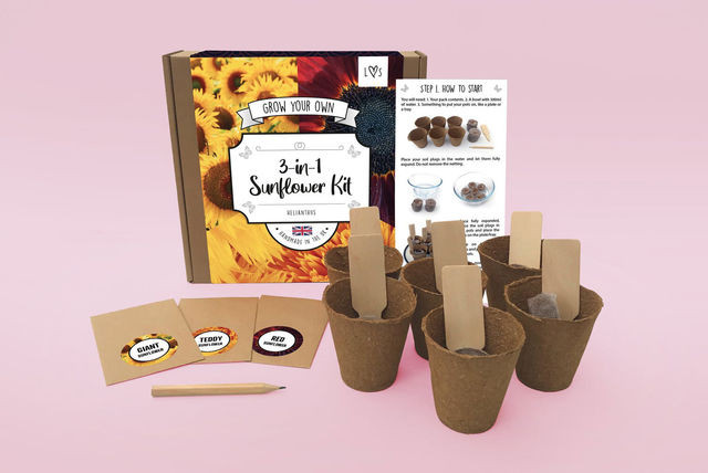 Packet of sunflower seeds, pots, labels, pencil and growing instructions.