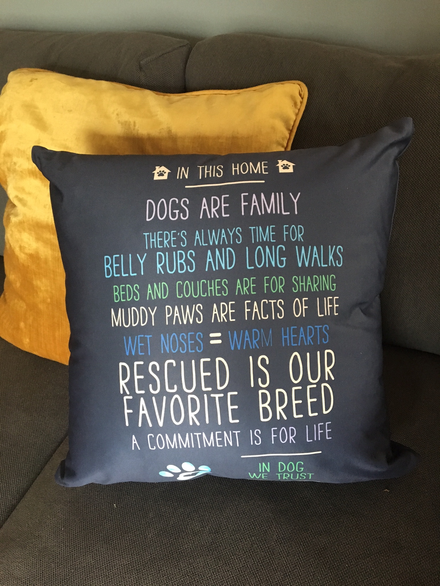 In This Home Dogs Are Family Throw Pillow
