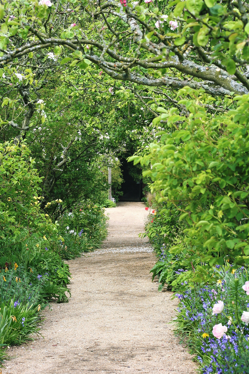 Lush green foliage and seasonal flowers on either side of a gravel path.