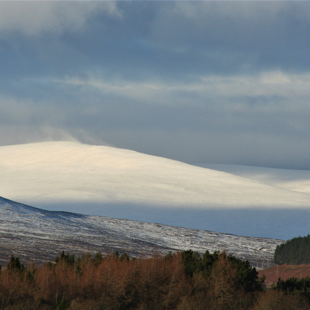 ©MDHarding Scottish Highlands (2).JPG