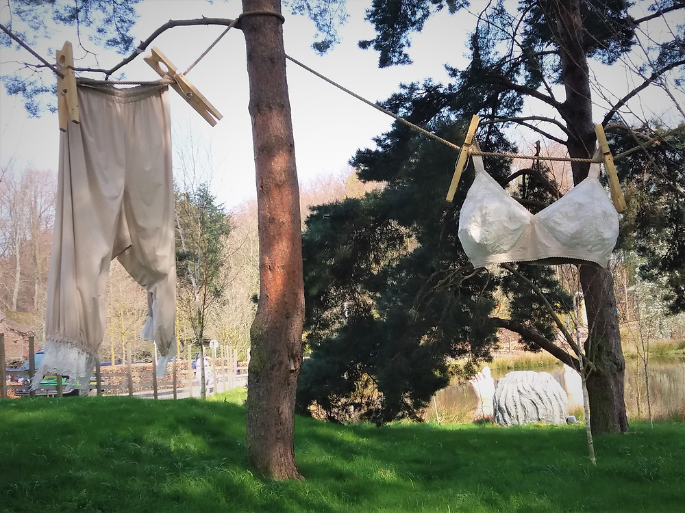 Washing line with large ladies bra and a large pair of trousers.