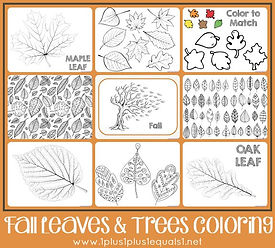 Fall Leaves and Trees Coloring Pages.jpg