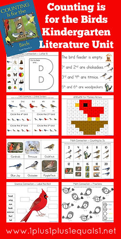 Counting is for the Birds Kindergarten L